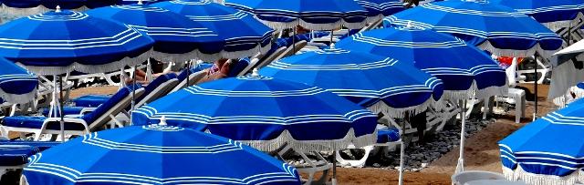 Inmersiones temáticas, verano 2013